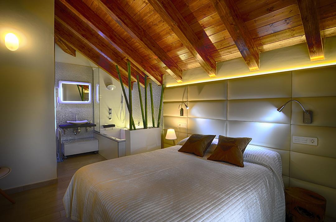 Pineta ordesa pirineo pirineo apartamento rural for Hoteles rurales de lujo